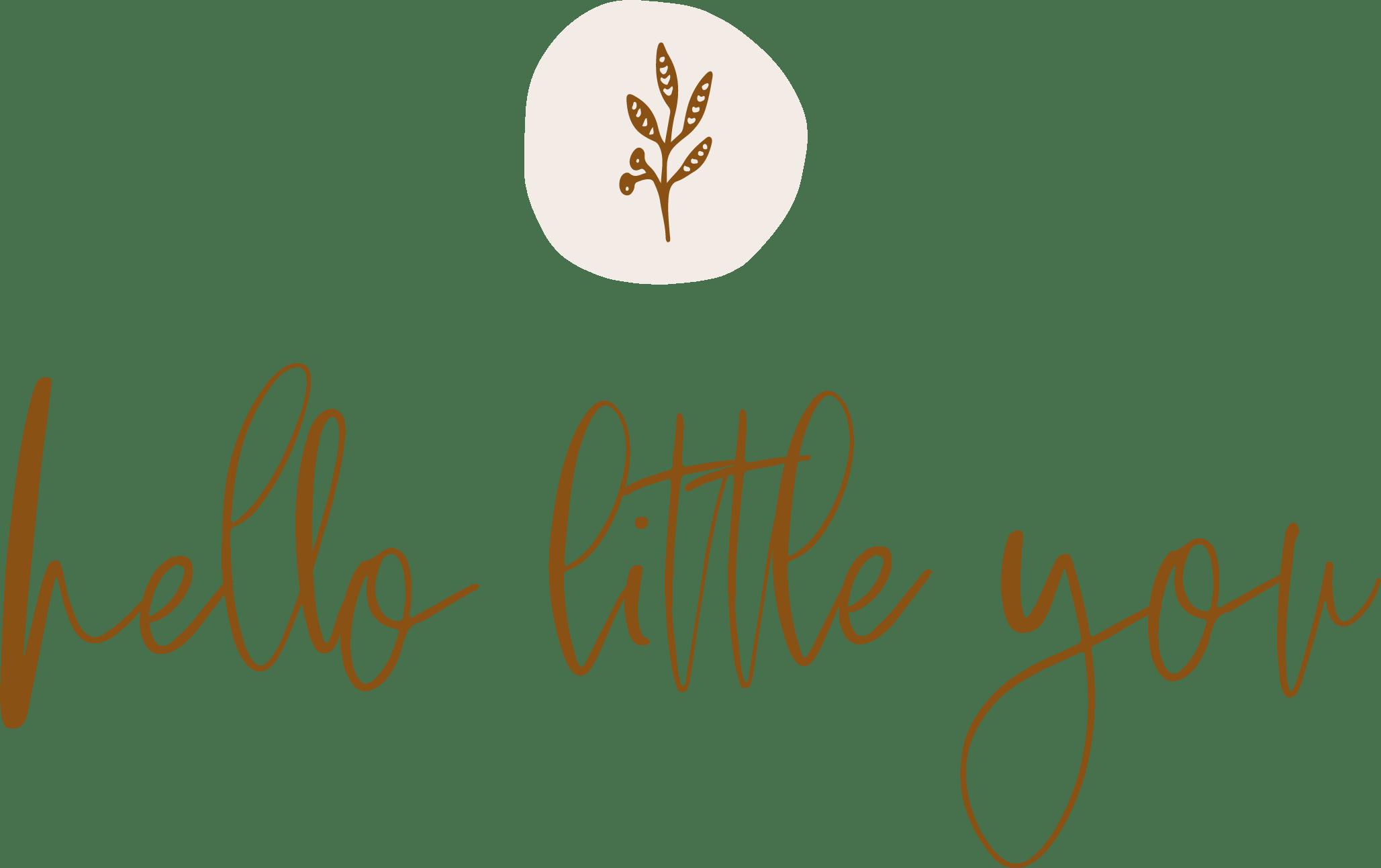 Logo Hello little you – vrijstaandkopie